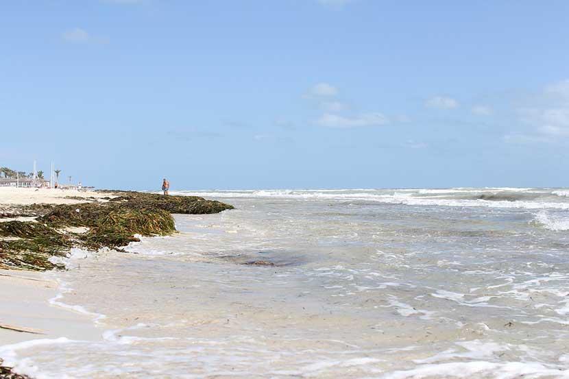 Beach in Djerba