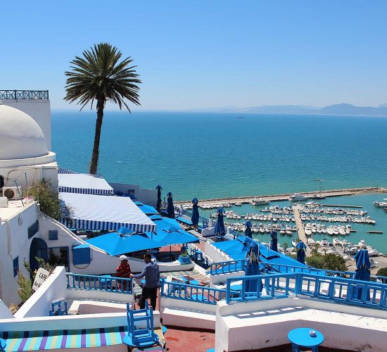 Blue-and-White Hilltop City of Sidi Bou Said Overlooking the Mediterranean Seaview