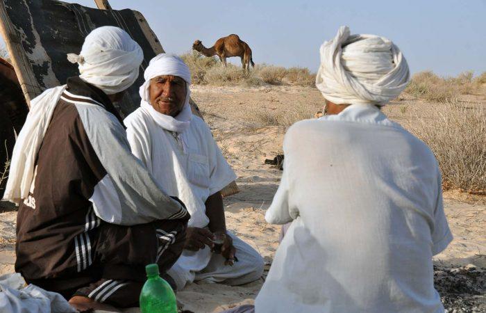 Tunisia Desert Camel Guides
