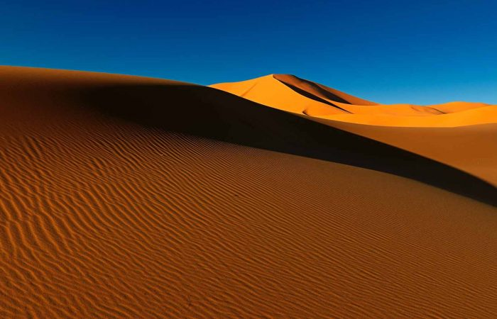 Golden Sahara Sand Dunes in Algeria