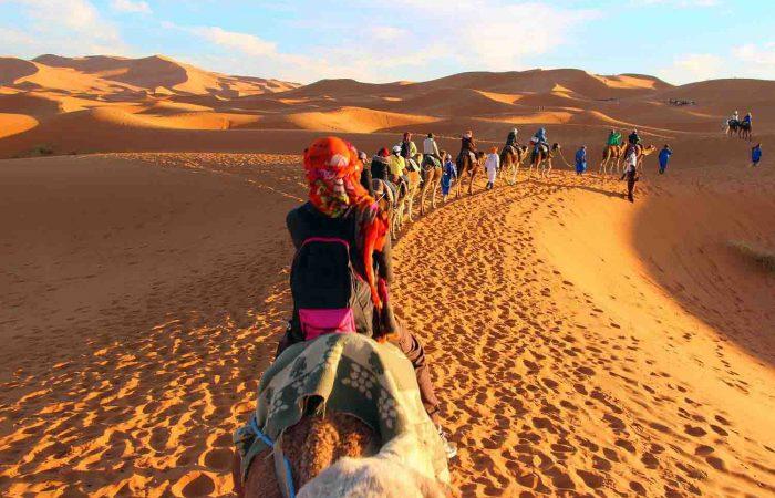 Sahara Camel Trek in Morocco