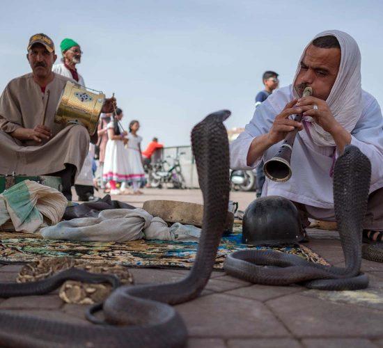 Snake Charmer in the Jemaa el-Fna of Marrakesh