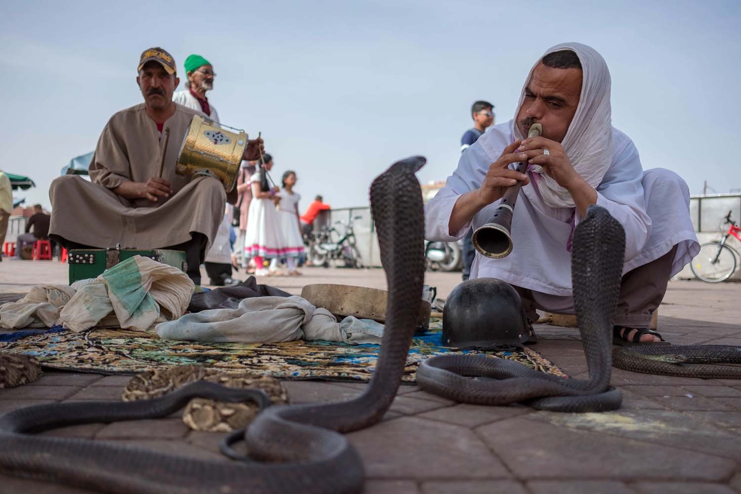 Snake Charmer in the Jemaa el-Fna of Marrakesh