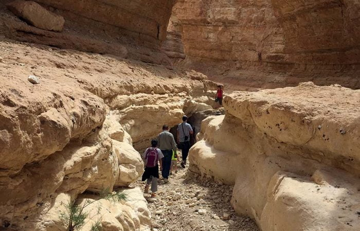 Tamerza Rock Formations